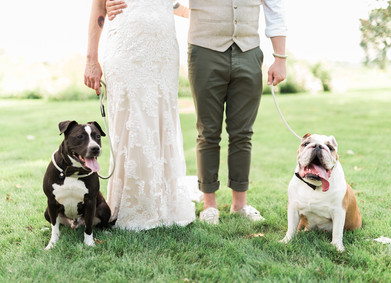 Современная свадьба: долой шаблоны!
