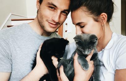 love-story, фотосессия влюблённой пары, фотосессия с котиками