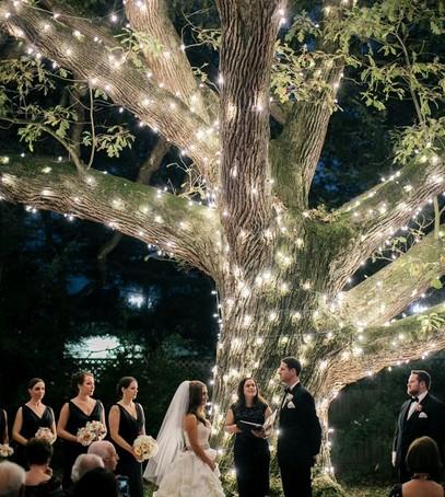 свадьба вечером, выездная церемония бракосочетания, роспись в лесу