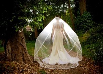 Свадебная фата: подборка 15 лучших фасонов