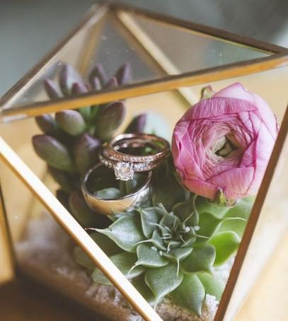 обручальные кольца, красивое фото свадебных колец