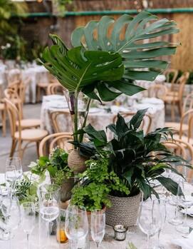 зелень свадьба
