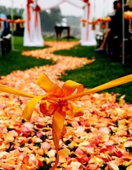 свадьба декор в оранжевом цвете