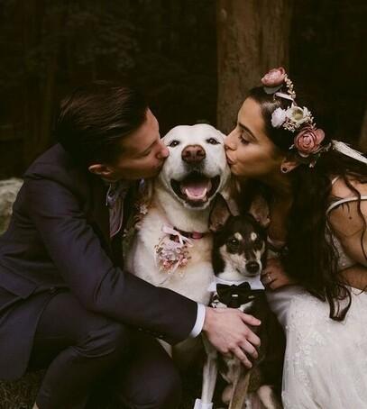 как написать клятву на свадьбу смешную