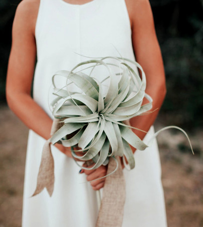суккуленты на свадьбе, невеста с букетом, необычный свадебный букет
