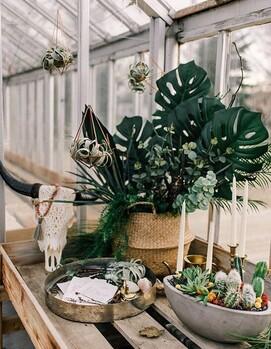 ботаник свадьба