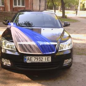 Skoda Octavia A5 - авто на свадьбу в Кривом Роге - портфолио 3