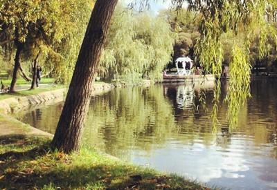 Парк Лебединое озеро (Лебединка) - фото 3