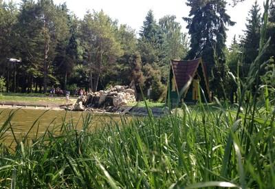 Парк Лебединое озеро (Лебединка) - фото 1
