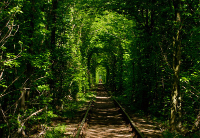 Тоннель любви - портфолио 3