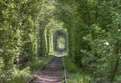Тоннель любви - портфолио 5