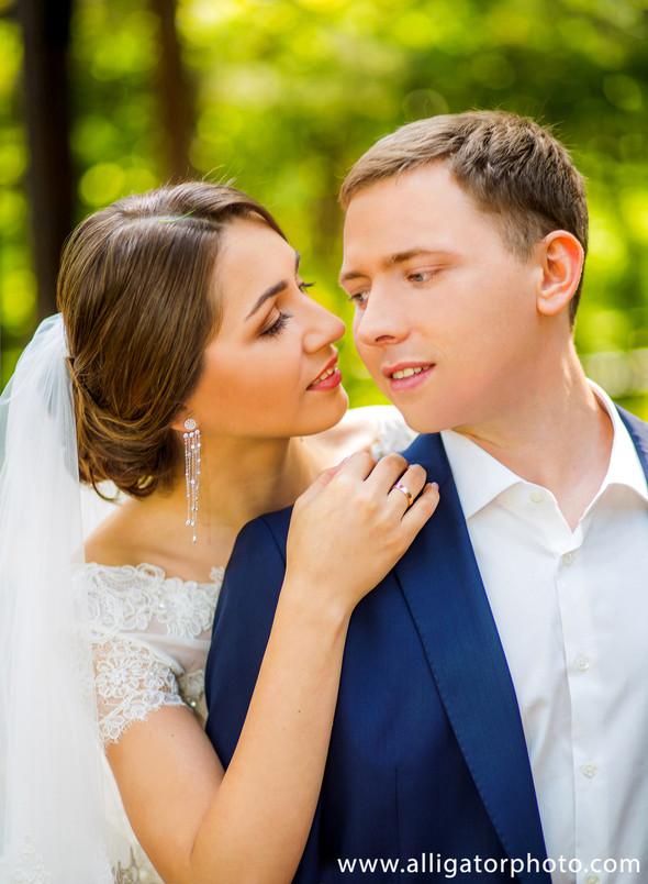 Андрей и Елена - фото №5