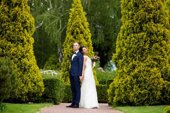 Елена и Дмитрий  - фото №23