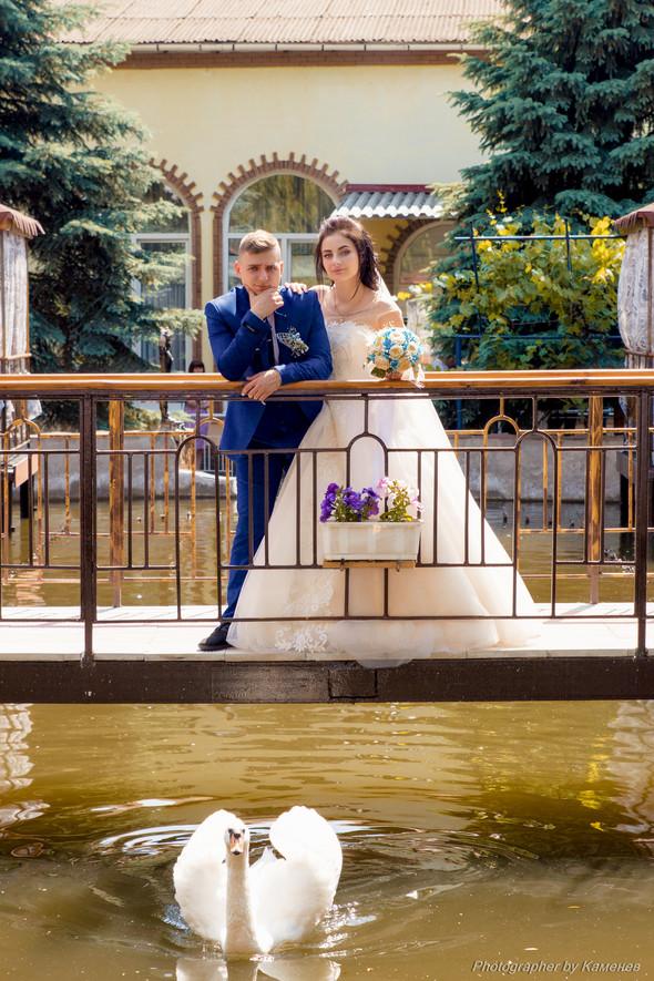 Свадьба в Краматорске парк Бернадского - фото №23
