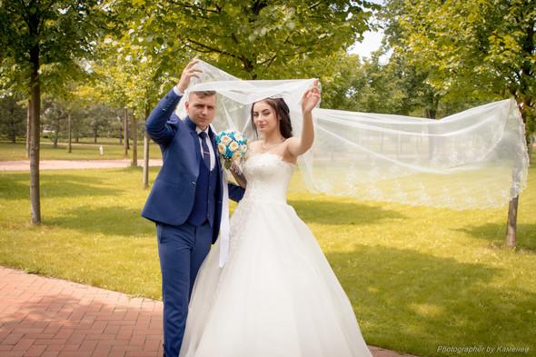 Свадьба в Краматорске парк Бернадского - фото №57