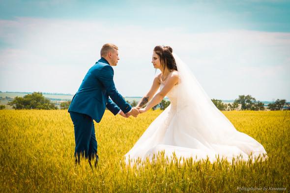 Свадьба в Краматорске парк Бернадского - фото №58