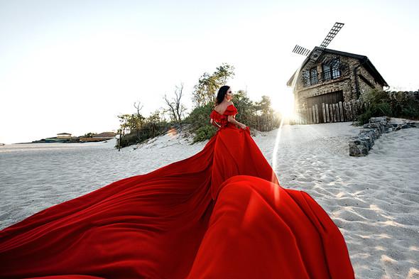 Red & Black - фото №1