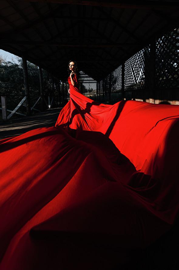 Red & Black - фото №5
