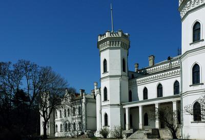 Дворцовый комплекс в Шаровке - портфолио 4