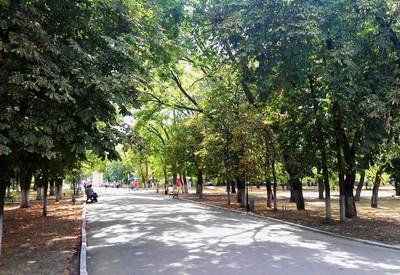 Шевченковский парк - фото 3