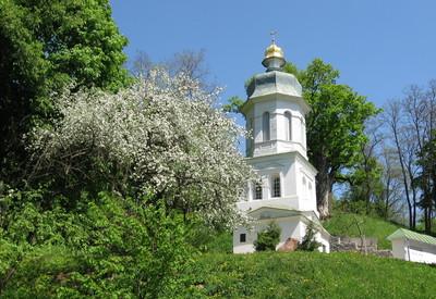 Болдина гора - место для фотосессии в Чернигове - портфолио 4