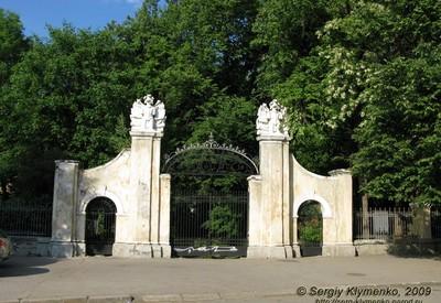 Дворец Потоцких - фото 3