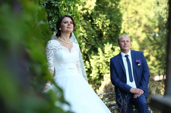 Свадебная история - фото №49
