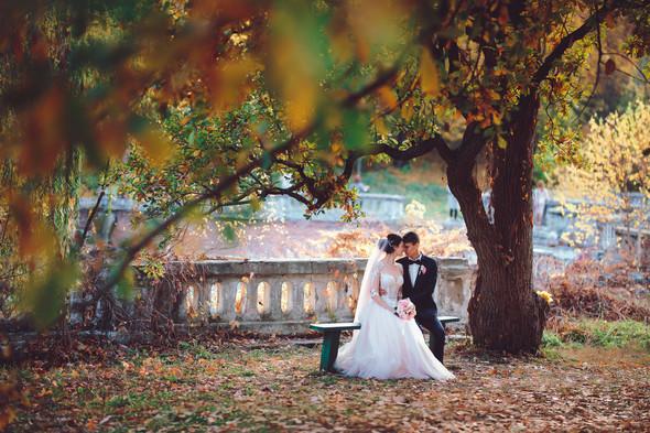 Анна и Евгений - фото №62