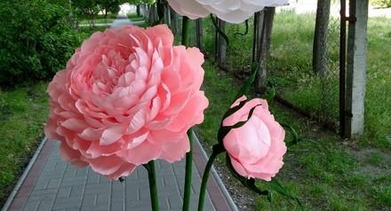 Знижки на стійки квітів