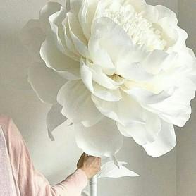 Big flowers - декоратор, флорист в Сумах - портфолио 5