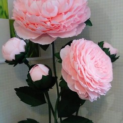 Big flowers - декоратор, флорист в Сумах - фото 2