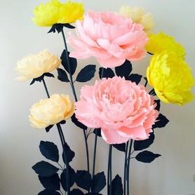 Big flowers - декоратор, флорист в Сумах - портфолио 3