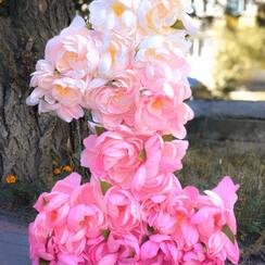 Big flowers - декоратор, флорист в Сумах - фото 4