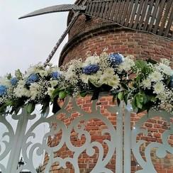 Мальви - выездная церемония в Житомире - фото 2