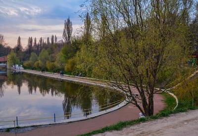 Парк Реформации - портфолио 4