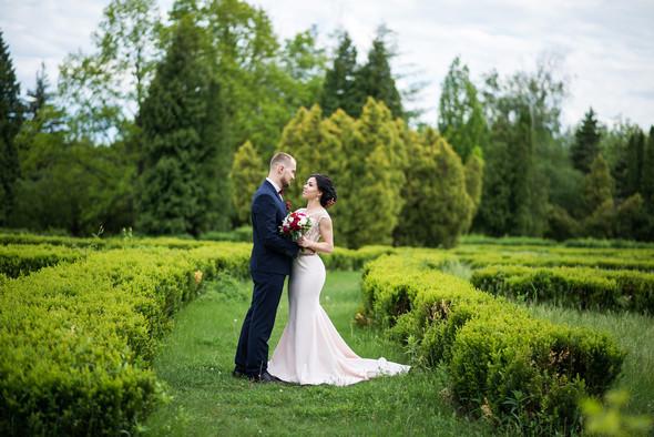 Свадебные фото - фото №15