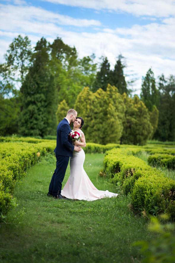 Свадебные фото - фото №16
