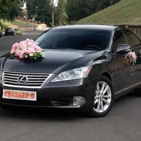 Lexus es 350 - авто на свадьбу в Киеве - портфолио 1