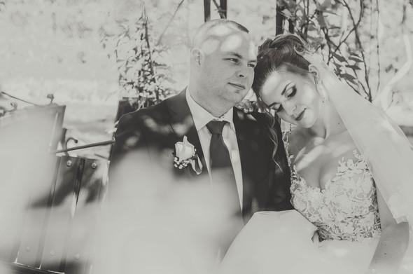 Весілля Віталія та Яніни - фото №14
