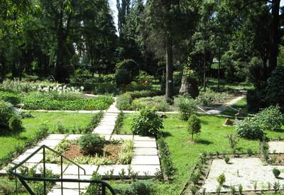 Ботанический сад - место для фотосессии в Ужгороде - портфолио 6
