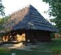 Музей народной архитектуры и быта - фото 16