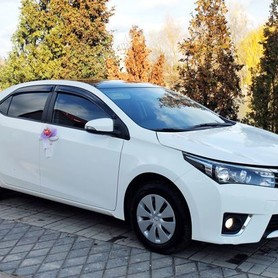 170 Toyota Corolla белая аренда на свадьбу - авто на свадьбу в Киеве - портфолио 4