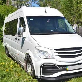 305 Микроавтобус Mercedes Sprinter VIP - авто на свадьбу в Киеве - портфолио 4