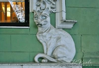 Дом Ягимовского (Дом с котами) - фото 2