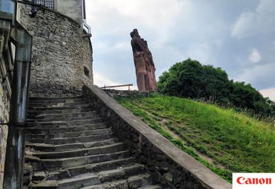 Замки: Олеско - портфолио 5