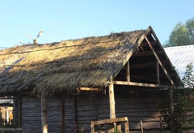 Великие Сорочинцы - место для фотосессии в Полтаве - портфолио 6