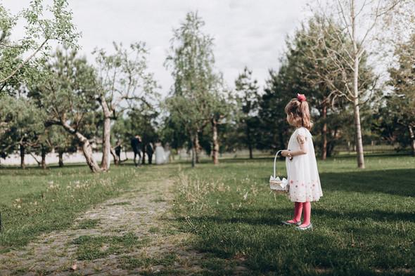 Алексей и Юля - фото №33