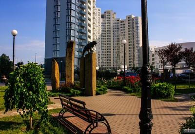 Сад камней - место для фотосессии в Киеве - портфолио 3