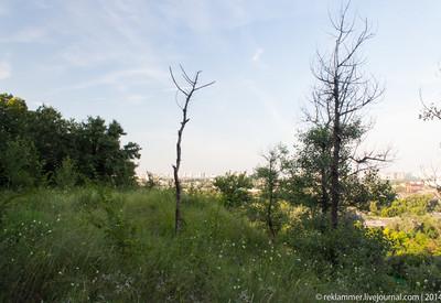 Лысая гора - место для фотосессии в Киеве - портфолио 6
