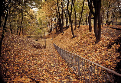 Парк Института педиатрии, акушерства и гинекологии - место для фотосессии в Киеве - портфолио 4